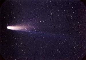 Lspn_comet_halley_300